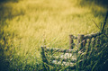 Bamboo wooden chairs on grass vintage - PhotoDune Item for Sale