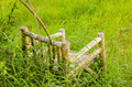 Bamboo wooden chairs on grass - PhotoDune Item for Sale