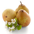 Three ripe pears - PhotoDune Item for Sale