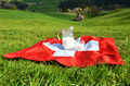 Jug of milk on the Swiss flag. Emmental, Switzerland - PhotoDune Item for Sale