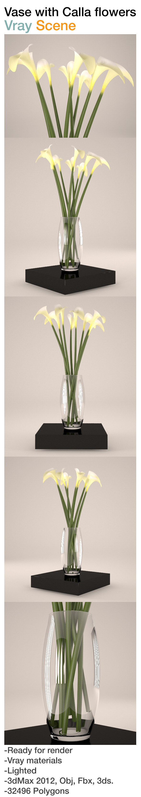3DOcean Vase with calla flowers 8377119