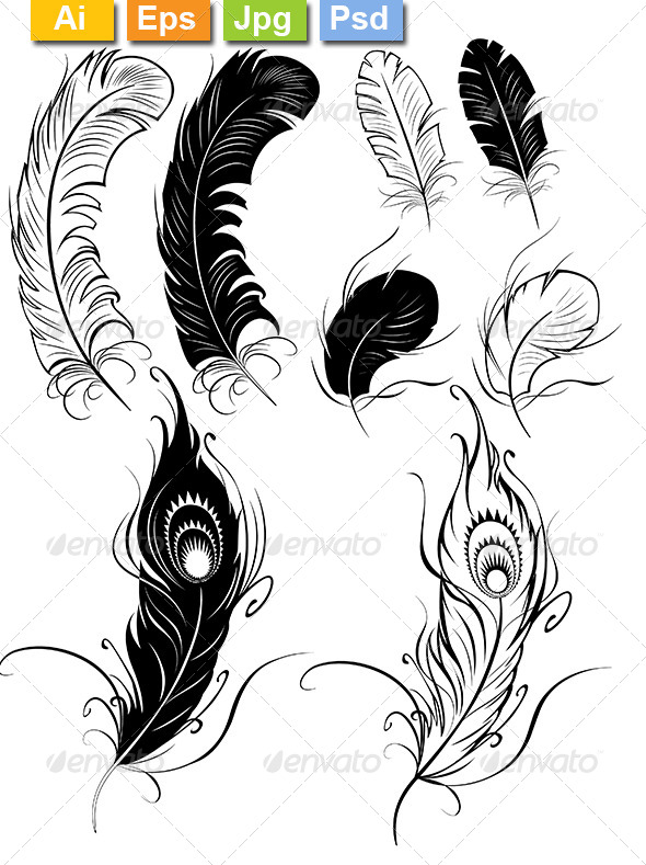 GraphicRiver Feathers 8386913