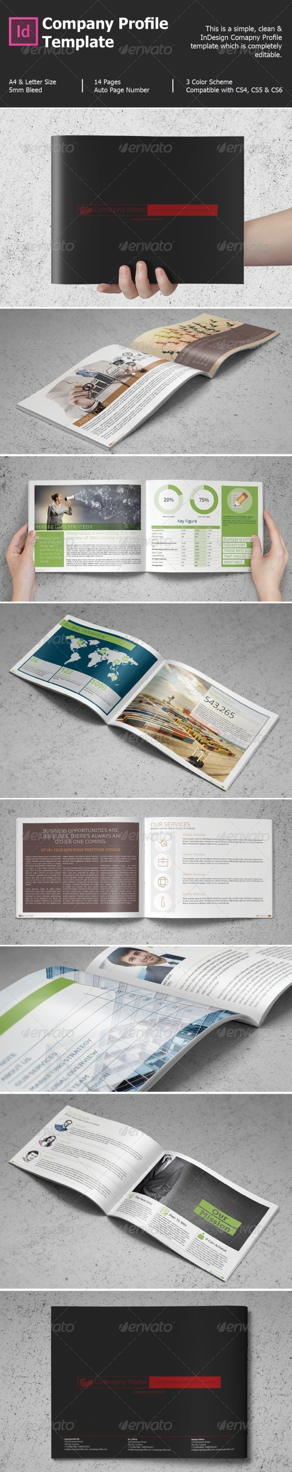 GraphicRiver Company Profile Template 8390086