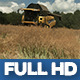 Modern Harvester On The Rape Field 11 - VideoHive Item for Sale