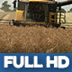 Modern Harvester On The Rape Field 14 - VideoHive Item for Sale