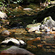 Mountain Stream - VideoHive Item for Sale