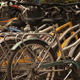 Bicycle Parking - VideoHive Item for Sale