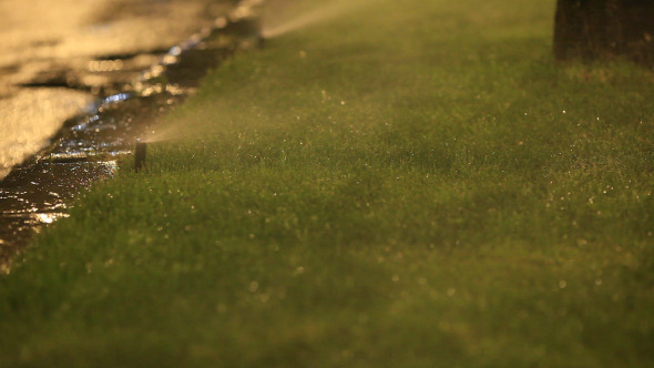 Water Spraying Grass