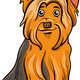 yorkshire terrier dog cartoon illustration - PhotoDune Item for Sale