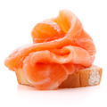 sandwich or canape with salmon on white background  cutout - PhotoDune Item for Sale