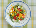 salad with corn, tomato, arugula and mozzarella cheese - PhotoDune Item for Sale