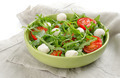 salad with tomatoes and mozzarella - PhotoDune Item for Sale