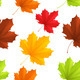 Autumn Leaves Pattern - GraphicRiver Item for Sale