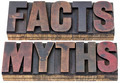 facts and myths in wood type - PhotoDune Item for Sale