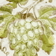 Hand Drawn Grapes - GraphicRiver Item for Sale