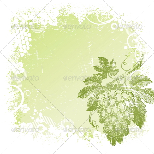 GraphicRiver Background with Hand Drawn Grapes 8422527