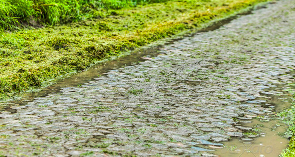 Cobbled Road in a Rainy Day - Stock Photo - Images