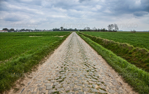 Cobbled Road  - Stock Photo - Images