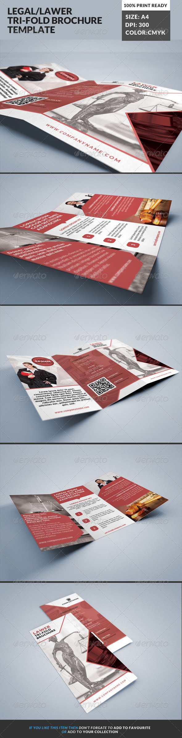 Lawer Legal Consultancy Tri-fold Brochure