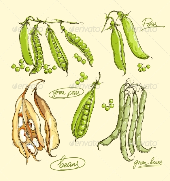 GraphicRiver Green Peas Illustration 8428745