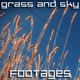 Grass and Sky - VideoHive Item for Sale