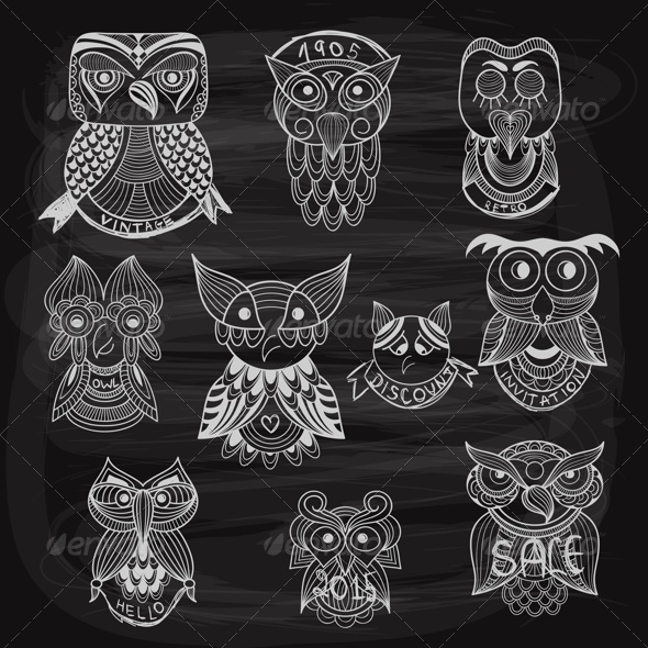 GraphicRiver 10 Chalk Drawn Owls on Blackboard 8429615