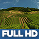 Moselle Valley Wineyard 1 - VideoHive Item for Sale