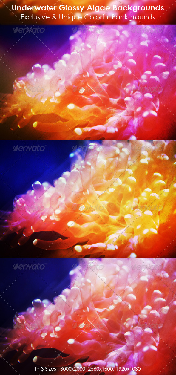 Colorful Glossy Web Backgrounds - Abstract Backgrounds