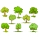 Set of Leafy Green Trees - GraphicRiver Item for Sale