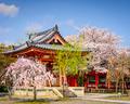 Sanjusan Temple Grounds - PhotoDune Item for Sale