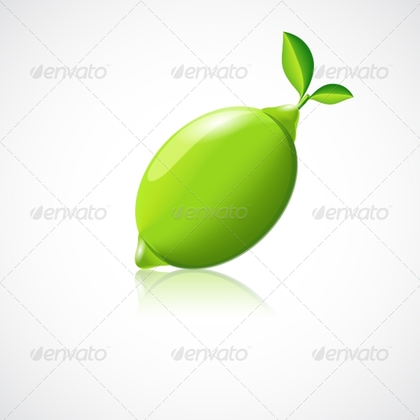 GraphicRiver Lime Fruit Icon 8437129