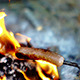 Cooking Sausage On Summer Bonfire - VideoHive Item for Sale