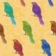 Parrot Background - GraphicRiver Item for Sale