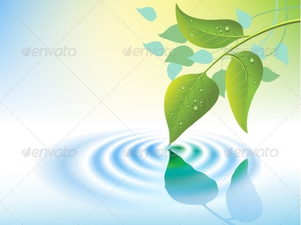 GraphicRiver Water Ripple and Leaf 8464268