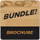 Brochure Bundle - GraphicRiver Item for Sale