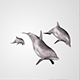 Basic Dolphins  - ActiveDen Item for Sale