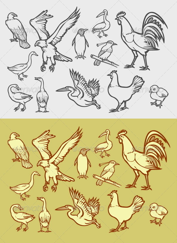 GraphicRiver Poultry Icons Sketch 8468501