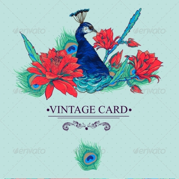 GraphicRiver Floral Vector Vintage Card with Peacock 8469139