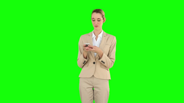 Businesswoman Texting On The Phone 2