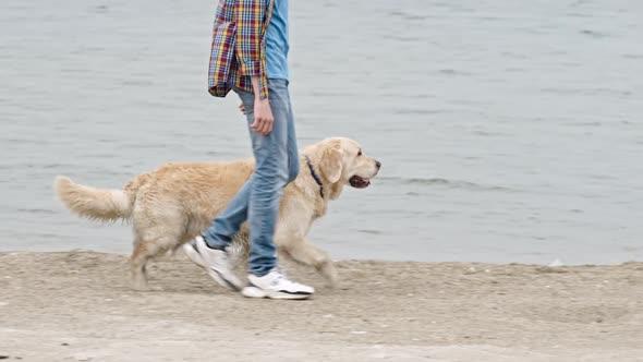 Download Man Walking Along Coast with Labrador Dog nulled download