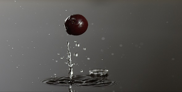 VideoHive Cranberry is Falling on a Wet Surface 9835474