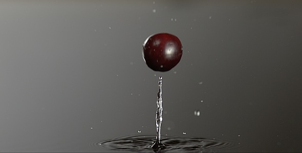 VideoHive Cranberry is Falling on a Wet Surface 9832304