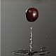 Cranberry is Falling on a Wet Surface - VideoHive Item for Sale