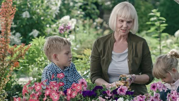 VideoHive Senior Lady Gardening with Grandchildren 19675469