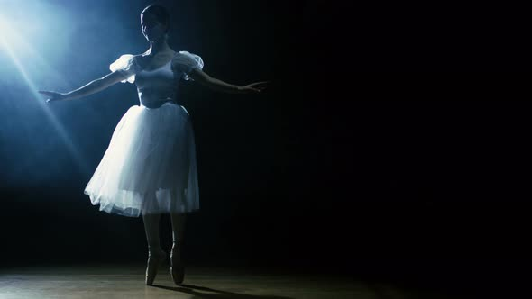 VideoHive Beautiful Young Ballerina Dances Gracefully in the Spotlight Darkness Around Her 19473649