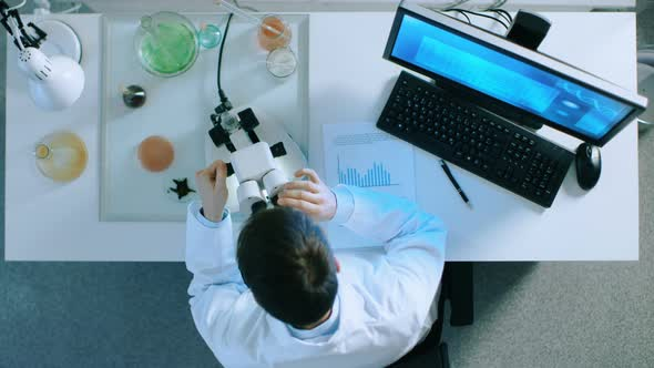 VideoHive Scientist Working on a Personal Computer with Green Screen on 19478706