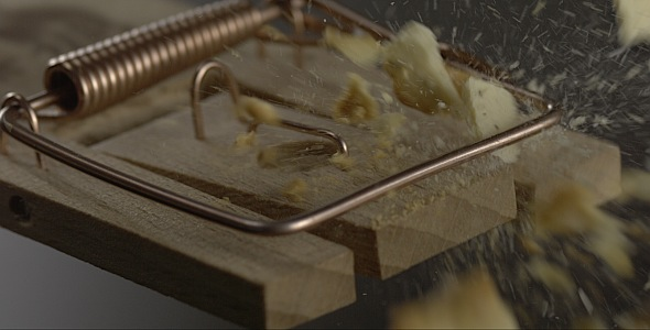 VideoHive Cracker is Falling on a Mousetrap 9842979