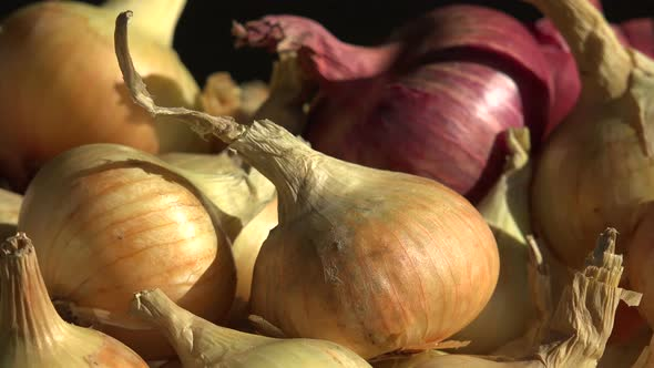Download Onions nulled download
