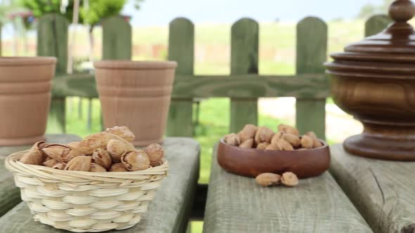 Download Almonds Shells nulled download