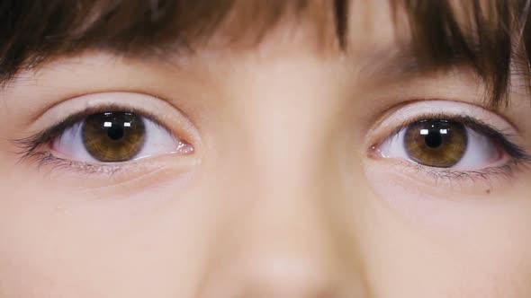 Download Beautiful Girl's Eyes. Human Eyes nulled download